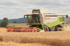Claas Lexion 550 Combine Harvester cutting Winter Wheat (Shane Casey CK25) Tags: claas lexion 550 combine harvester cutting winter wheat castletownroche grain harvest grain2018 grain18 harvest2018 harvest18 corn2018 corn crop tillage crops cereal cereals golden straw dust chaff county cork ireland irish farm farmer farming agri agriculture contractor field ground soil earth work working horse power horsepower hp pull pulling cut knife blade blades machine machinery collect collecting mähdrescher cosechadora moissonneusebatteuse kombajny zbożowe kombajn maaidorser mietitrebbia nikon d7200