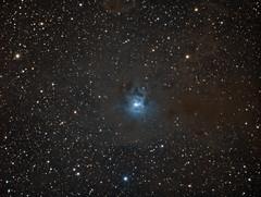 Iris Nebula (Dark Arts Astrophotography) Tags: astrophotography astronomy space sky stars star science nebula iris ngc7023 cluster night nature natur nightsky astrometrydotnet:id=nova2800009 astrometrydotnet:status=solved