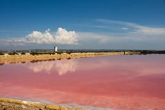 Marsala (francesca.pasqualin94) Tags: water pink salt sicily marsala italy seasalt saline