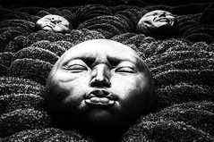 "ethereal faces in the Garden of Emotions, fine art black & white, The Gardens of Etretat - Les Jardins d'Etretat, Étretat, Seine-Maritime, Haute-Normandie, Normandy, France (grumpybaldprof) Tags: étretat seinemaritime hautenormandie normandy france arches ""portedaval"" ""portedamont"" ""portedemanneporte"" laiguille ""theneedle"" ""eugèneboudin"" ""gustavecourbet"" ""claudemonet"" ""paysdecaux"" ""alabastercoast"" ""chapellenotredamedelagarde"" ""thewhitebird"" ""loiseaublanc"" ""lachapellenotredamedelagarde"" ""falaised'amont"" ""thegardensofetretat"" ""lesjardinsd'etretat"" alabaster white cliffs needles faces emotions gardenofemotions expression bw blackwhite ""blackwhite"" ""blackandwhite"" noireetblanc monochrome ""fineart"" ethereal striking artistic interpretation impressionist stylistic style contrast shadow bright dark black illuminated canon 70d ""canon70d"" tamron 16300 16300mm ""tamron16300mmf3563diiivcpzdb016"" art sculpture heads"
