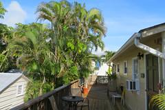 Key West (Florida) Trip 2017 7931Ri 4x6 (edgarandron - Busy!) Tags: florida keys floridakeys keywest authorsofkeywest