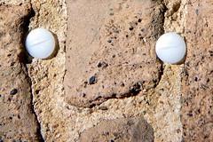 Stopfen Backstein Gesicht (diezin) Tags: diezin flickr gesicht gesichter kodak kriel krielerdom mauer mauergesicht plastikaugen tour3 zofosdurchköllejonn