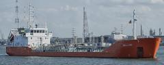 Bellini (Mark A.H.) Tags: bellini chemical tanker ship vessel water 9157014 209208000 cyprus cy 5bxp4 antwerp antwerpen belgium belgie