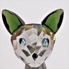 Glass cat. (Les Fisher) Tags: macromondays glass squareformat