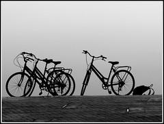 No topo da calçada (Américo Meira) Tags: portugal lisboa pedrouços fundaçãochampalimaud bicicleta bw challengeyouwinner cyunanimous