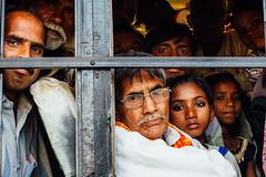 Crowded Holi Pilgrim Bus (AdamCohn) Tags: adamcohn india mathura vrindavan holi wwwadamcohncom