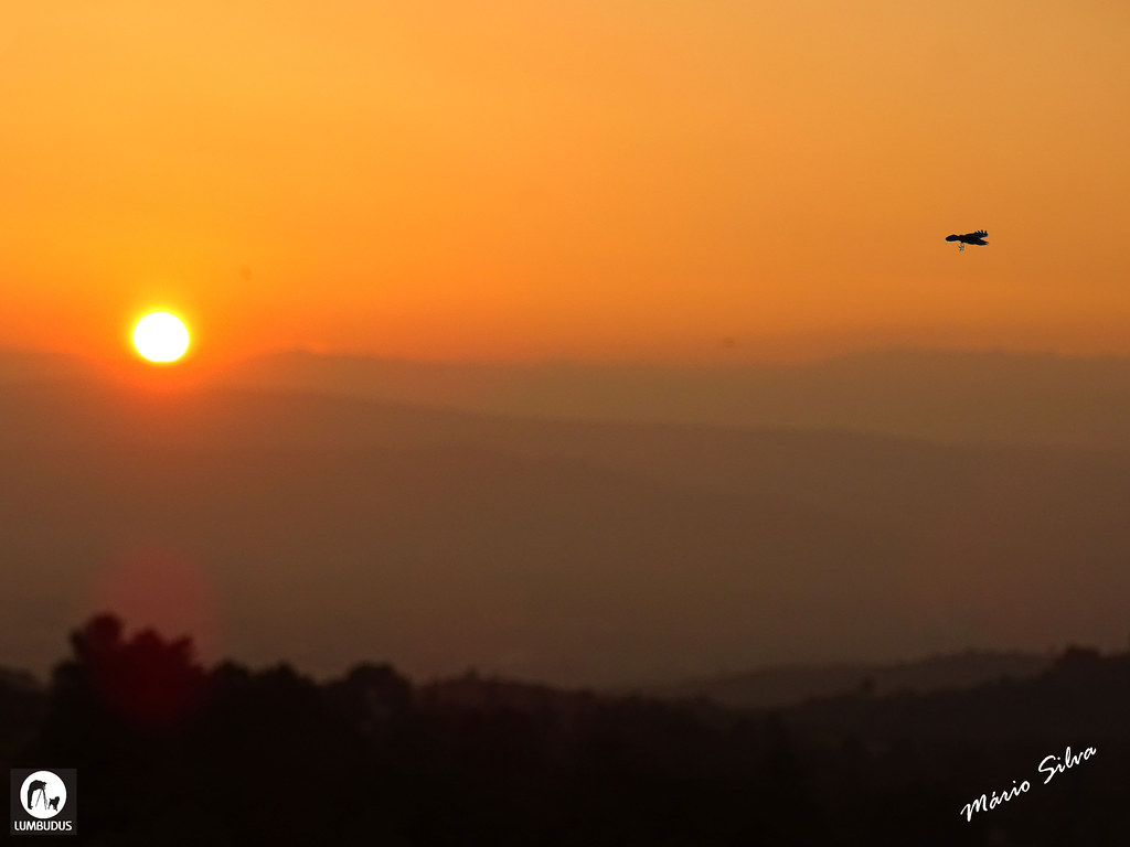 Águas Frias (Chaves) - ... pôr do sol e a ave passando ...