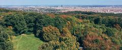 Vienna (ichbinnichtda) Tags: vienna landscape panorama wienerwald autumn