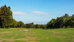 Effingham Golf Club-E9150085 (tony.rummery) Tags: autumn bunker em10 effingham fairway golf golfcourse landscape mft microfourthirds omd olympus surreyhills leatherhead england unitedkingdom gb