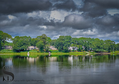 Trees by the water and moody sky (Singing With Light) Tags: 2018 4th a7iii gulfbeach milfordct mirrorless singingwithlight sonya7iii summer august photography signs singingwithlightphotography sony watersea