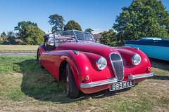 Jaguar XK 130 (christopherread490) Tags: croxleygreen england unitedkingdom
