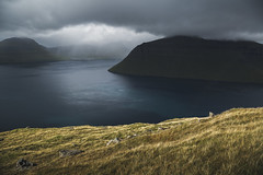 Shifting weather (photographybyjoss ↟↟) Tags: weather mood moody rainclouds landscape landschaft mountains mountain faroeislands färöarna nature explorenature gooutexplore autumn canoneos5dmarkiii dreamscapes europe holiday islandlife light rainbow matte nordic ocean outside perfectlight travelphotography water