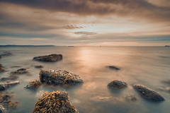 Golden Shores (TommyToro) Tags: shoreline shore light sunrise sun water ocean sea seascape landscape rocks jurassic coast coastline horizon over longexposure seaweed seaside seafront beach clouds sky
