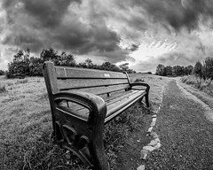 A seat before the rain (Zog the Frog) Tags: lenstagger clouds rain mono ultrawide fisheye path seat trees
