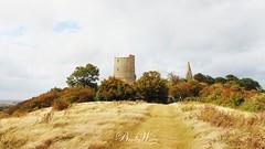 Hadleigh Castle (Stephen Bradley-Waters) Tags: hadleighcastle castle historic henryiii history landmark essex heritage ruins