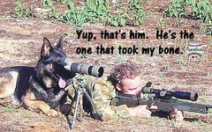 Best Funny Quotes : Mans BFF (Quotes of Day) Tags: