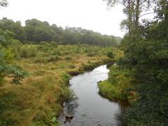 DSCN5546 (norwin_galdiar) Tags: bretagne brittany breizh finistere monts darrée nature landscape paysage