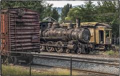 Hiding on the Back Line (NoJuan) Tags: train northwestrailwaymuseum railroad railway rust rusty neglected olympus1250mmf3563 olympus em1 olympusem1 microfourthirds micro43 m43 mirrorless