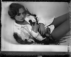 W. (denzzz) Tags: portrait polaroid55 expired blackwhite blackandwhite skancheli analogphotography filmphotography instantfilm wista45dx 4x5 largeformat schneidersupersymmar120mmf56hm negativescan