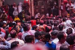 Holi in Banke Bihari Temple, Vrindavan India (AdamCohn) Tags: abeer adamcohn bankebiharimandir hindu india shribankeybiharimandir vrindavan gulal holi pilgrim pilgrimage अबीर गुलाल होली