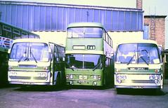 Slide 121-02 (Steve Guess) Tags: hertfordshire england gb uk bus london country north strathclyde glagow leyland atlantean alexander aec reliance plaxton green line lcne east p5 p3 spk203m spk205m sga71n an