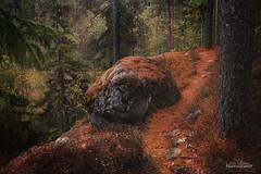 Brobacka (Joni Salama) Tags: luonto kivi nuuksio syksy brobacka espoo suomi metsä uusimaa finland fi nature landscape rock woods autumn