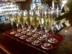 UnCruise S.S. Legacy Sparking Wine Reception (Nancy D. Brown) Tags: uncruise sslegacy lewiston washington sparklingwine champagne happyhour