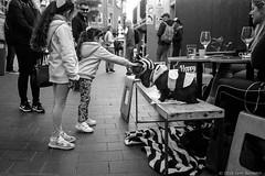 meeting the blind rescue cats  #420 (lynnb's snaps) Tags: 201808 35mm cv21mmf4ltm ilfordfp4 leicaiiic manly xtol bw blackandwhite cafe cats children film fp4 street manlyvillage sydney australia 2018 cute bianconegro blackwhite bianconero biancoenero blancoynegro noiretblanc monochrome ishootfilm leicafilmphotography cv35mmf25colorskoparltm rangefinderphotography barnack ©copyrightlynnburdekinallrightsreserved