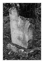 Vieille tombe (DavidB1977) Tags: france picardie hautsdefrance oise feigneux morcourt fujifilm x100f église ruines vestiges monochrome bw nb bourgon tombe