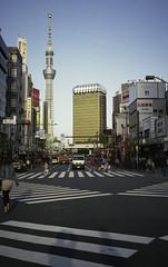 Golden Poo (nickpedro) Tags: japan tokyo contax contaxt2 pointandshoot fuji100iso fujiindustrial100 fujicolorfilm fujifilm fujicolorprint100 nihon robot sun