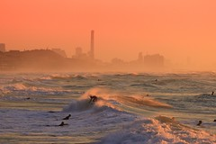 Surfing at Sunset - Tel-Aviv beach - Follow me on Instagram:  @lior_leibler22 (Lior. L) Tags: surfingatsunsettelavivbeach surfing sunset telaviv beach sea seascapes waves surfers