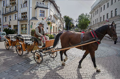 Horse-cart.................. (Rambonp:loves all creatures of this universe.) Tags: jackopane poland country europe landscape wallpaper canon nature green yellow garden plant flowers red paradise silhouette mountains sports horse horsecart people buildings
