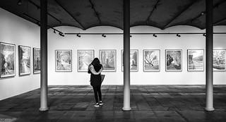 Appreciating Art 074