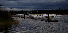 Ducks In A Row (Parkei) Tags: float plane dock clouds sky nikon d3400 tamron18400 affinity water ocean campbellriver bc