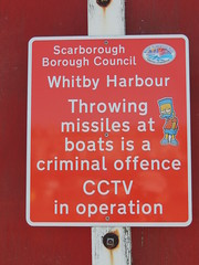 It's Criminal! (Glass Horse 2017) Tags: nyorks whitby signsunday sign bartsimpson harbour criminaloffence disguise