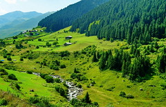 mountain village (meren34) Tags: plateau rize turkey country mountain spring nature pasture grassland green house valley pine forest