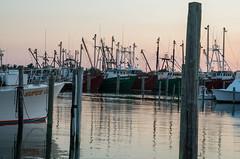 Sea Dog (ridgewood.photog) Tags: pentax k50 nj newjersey lbi longbeachisland vikingvillage fishing fleet ship