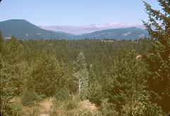 Image2431 (Alvier) Tags: usa amerika westen nordwesten grandcoulee reise