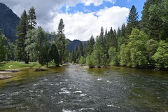 along the Merced River (Randy Gardner 88) Tags: yosemite yosemitenationalpark california nationalparkservice nationalparksamericasbestidea trees mountains granite cliffs waterfalls waterfall merced mercedriver yosemitevalley may2016 2016