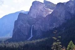 Bridalveil Falls (Randy Gardner 88) Tags: yosemite yosemitenationalpark california nationalparkservice nationalparksamericasbestidea trees mountains granite cliffs waterfalls waterfall merced mercedriver yosemitevalley may2016 2016