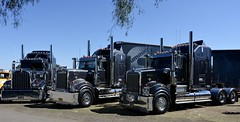 Kerden (quarterdeck888) Tags: trucks photos truckphotos australiantrucks outbacktrucks workingtrucks primemover class8 overtheroad interstate frosty quarterdeck jerilderietrucks jerilderietruckphotos flickr bdoubles lorry bigrig highwaytrucks interstatetrucks nikon truck kenworth kenworthclassic kk kenworthclassic2018 truckshow truckdisplay workingclasstrucks noprizes kerdens legend t900 t950 limitededition kenworthlegends