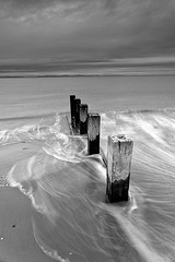 the groyne (donnnnnny) Tags: d850 nikon scotlan findhorn beach bay monocrome