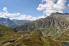 DSC_2333 (Puntin1969) Tags: nikon reflex svizzera montagna agosto estate viaggio ticino vista scorcio alpi animali balcone sole