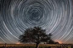 My first Startrail (eSePoste) Tags: startrail time lapse noche estrellas via lactea galaxia circulo circumpolar nikon 5300 polo sur argentina la pampa arbol campo calden naturaleza negro luz oscuridad night stars milky way galaxy circle south pole tree countryside nature black light darkness