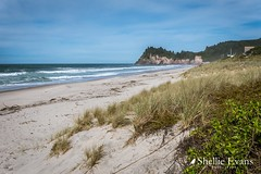 Whiritoa Beach, Coromandel