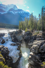 Athabasca Falls (Alison Claire~) Tags: canada alberta ca north america jasper national park icefields parkway canadian rockies nature outdoor outdoors wild canon canoneos canoneos600d eos eos600d rebelt3i plant vegetation flora landscape waterfall athabasca falls water mountain tree pine rock cliff sun