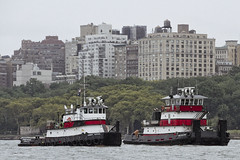 r_180909157_beat0075_a (Mitch Waxman) Tags: 2018greatnorthrivertugboatrace hudsonriver manhattan tugboat workingharborcommittee newyork