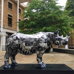 Tusk Rhino Trail (brimidooley) Tags: tuskrhinotrail rhinoceros art publicart london uk england greatbritain chelsea