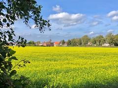 Colors of nature..... (rienschrier) Tags: zeeland nederland dutch landscape landschap