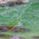 Green Lake Reflection thumbnail